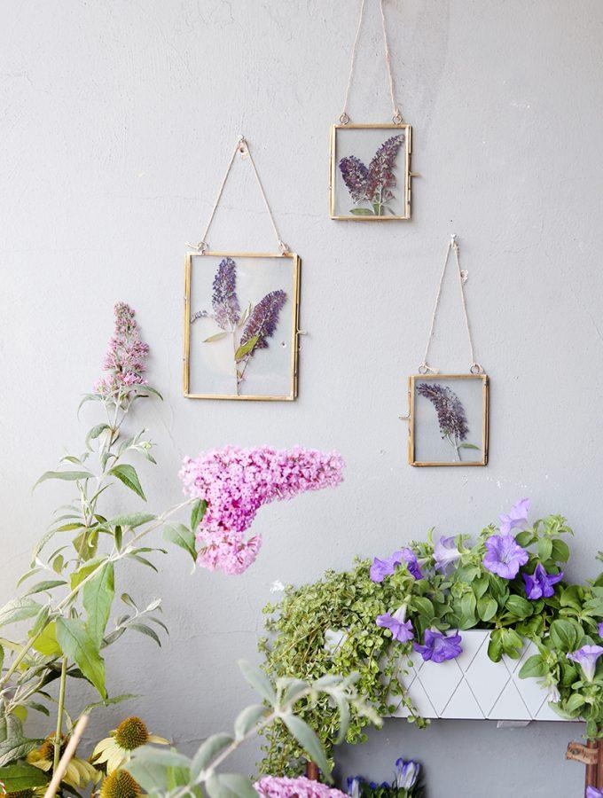 Flieder_DIY-Blumenpressen-13