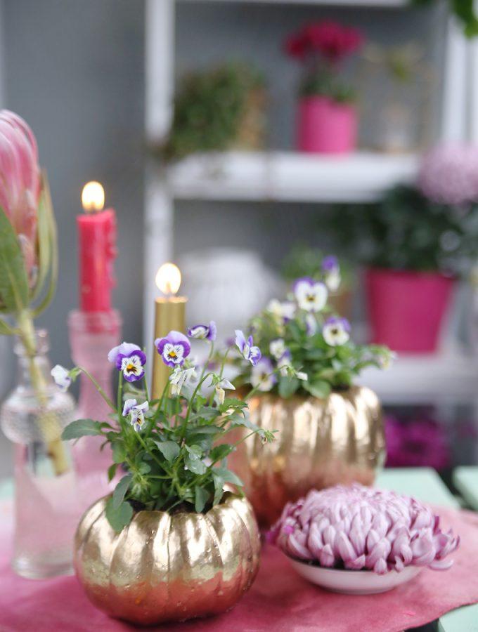 {DIY} Kürbis-Pflanztöpfe | Herbstbalkon in Pink und Gold