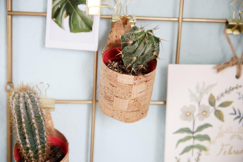 diy kork pflanzt pfchen zum aufh ngen mein feenstaub. Black Bedroom Furniture Sets. Home Design Ideas