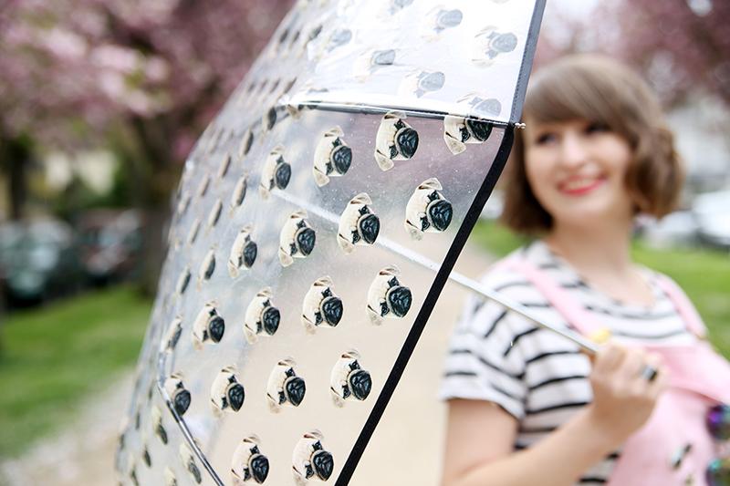 Mopsschirm, transparenter Regenschirm