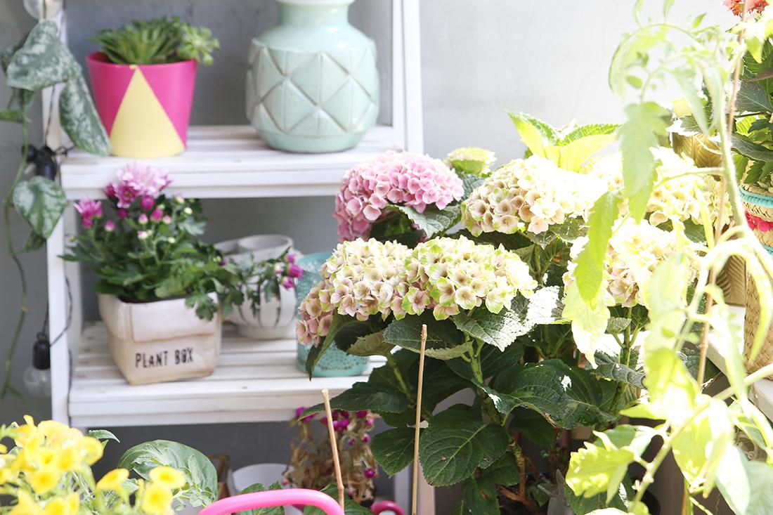 3 diy ideen f r deinen boho balkon pflanzen pflegetipps. Black Bedroom Furniture Sets. Home Design Ideas