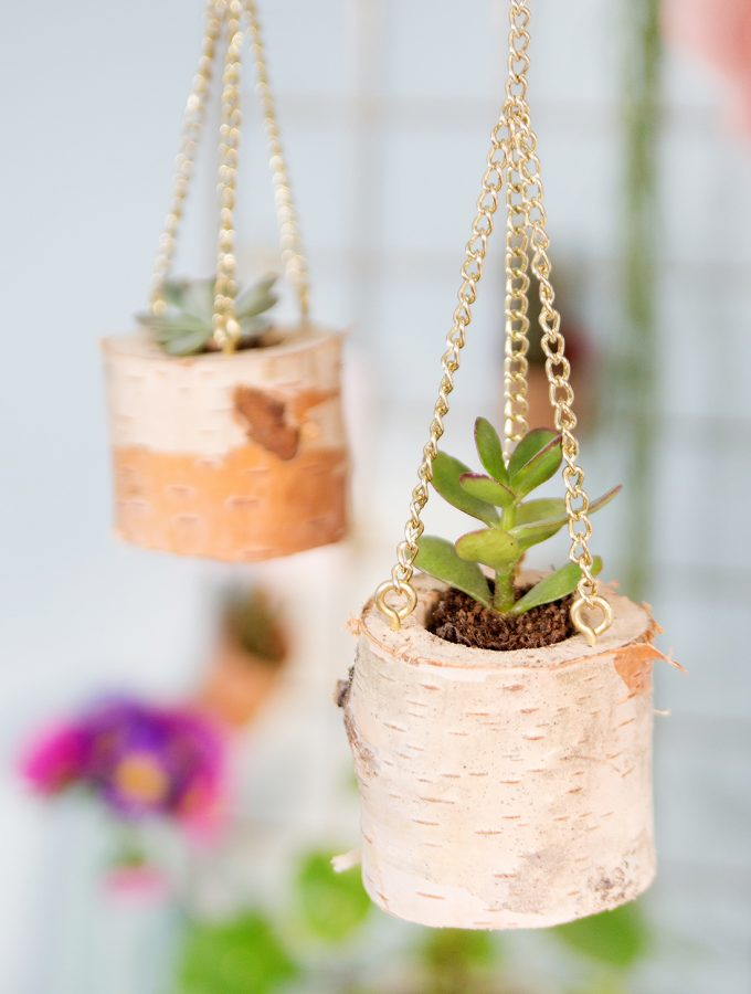 meinfeenstaub-diy-blog-hanging-planter-birke (18)