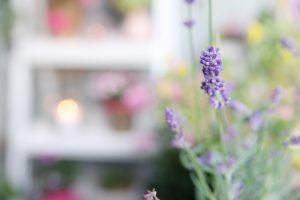 diy herbstlicher pflanztopf herbst diy balkon do it yourself blog 9 mein feenstaub