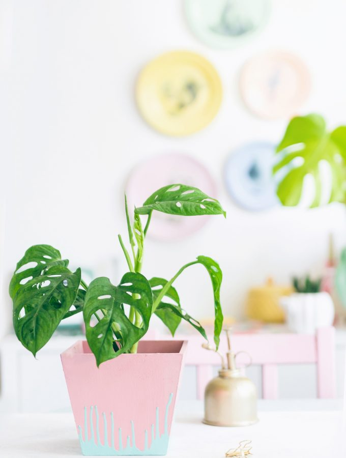 DIY: Pflanztopf mit Dripping-Effekt