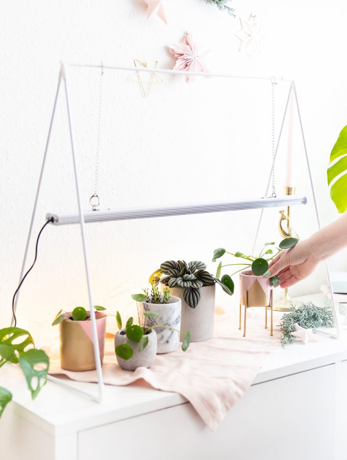 Venso-DIY-Geschenk-Pflanzen-15
